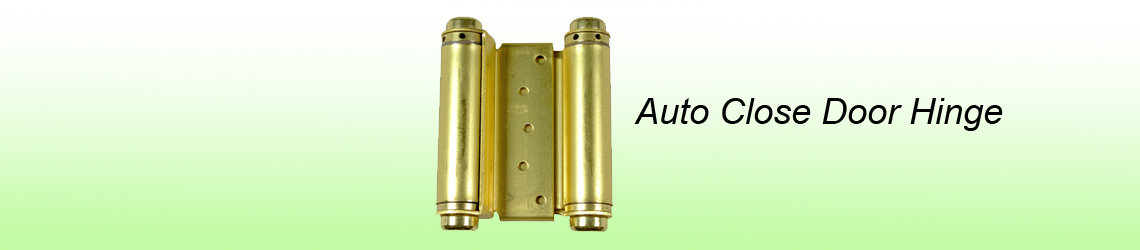 Auto close door hinge